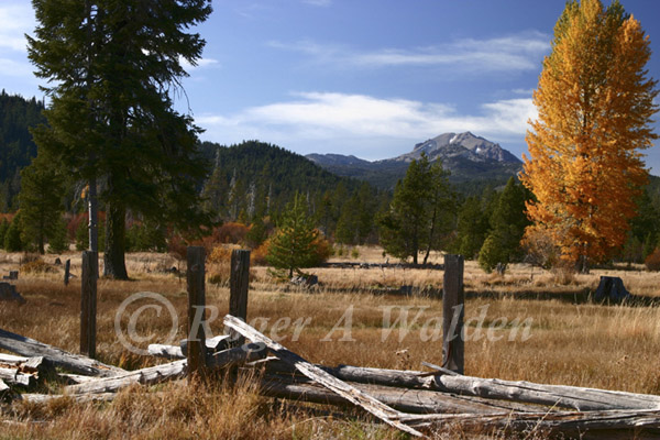 mt lassen,  warner valley - fall colors
